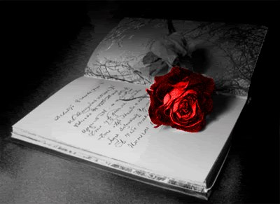 Rose-for-your-words-poetry-33064141-400-291